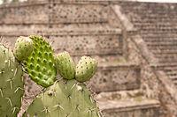 15-07-20-Teotihuacan-by-RalfR-N3S 9426.jpg
