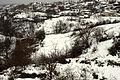 20091215 Ano Birsini Rhodope Thrace Greece 1.jpg
