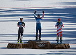 2010 Olympics - Mens Super Combined Medals cropped.jpg