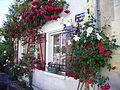 2011 Donzy Burgundy France 5763509220 42bb36dd33 o.jpg