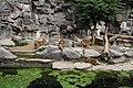 2012-09-15 Tierpark Berlin 30.jpg