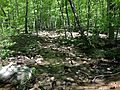 2013-05-12 10 19 37 View up the MacEvoy Trail where it crosses a small stream in Ramapo Mountain State Forest.jpg