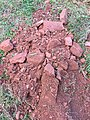 2015-10-22 16 38 47 Native red shale and clay soil along Tranquility Court in the Franklin Farm section of Oak Hill, Virginia.jpg