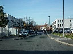 Tübinger Straße in Dresden