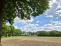 20200517 Zicht vanaf de Hondsrug (vanaf de Lemenweg nabij Drouwen).jpeg