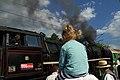 22.8-15 190 Years of the Railway in Bujanov 105 (20608284888).jpg