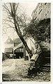 24215-Radeberg-1928-Schloßhof Klippenstein-Brück & Sohn Kunstverlag.jpg