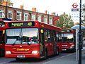 419 bus.jpg