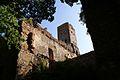 4377viki Ząbkowice Śląskie - ruiny zamku. Foto Barbara Maliszewska.jpg