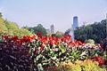 6A 0802 - panoramio.jpg