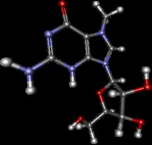 7-Methylguanosine - Image: 7 Methylguanosine ball and stick
