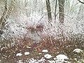 930 12 Ohrady, Slovakia - panoramio - Laci30 (31).jpg