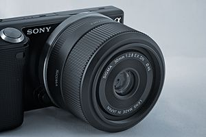 Sony E-mount - Sony NEX-5 with Sigma 30mm F2.8 EX DN lens.