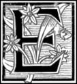 AFR V4 D015 Letter E.png