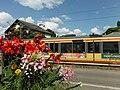 AVG-Stadtbahn in Gernsbach.jpg