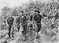 AWM 016227 2 23rd Battalion casualty Sattelberg November 1943.jpeg