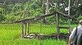 A hut called ose in Nias language.jpg
