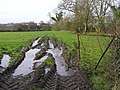 A muddy field near Cranny - geograph.org.uk - 1073580.jpg