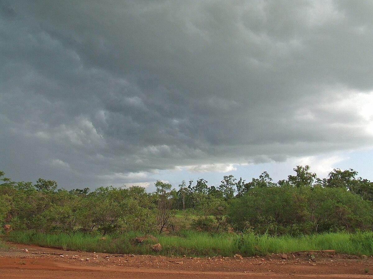 Acacia Hills Northern Territory Wikipedia