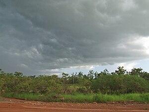 Acacia Hills, Northern Territory - Acacia Hills