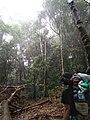 Adventure in bulusaraung.jpg