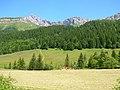 Agriculture durable Parc naturel régional du Vercors 2.JPG