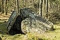 Albi trikuharria-18.jpg