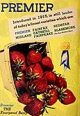 Allen's 1947 book of berries (1947) (17763202100).jpg