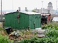 Allotment's in Prince of Wales Road, Holyhead (3).jpg