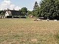 Allouville-Bellefosse (Seine-Mar.) paysage avec chaumière.jpg