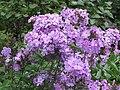 Aménagement paysager, dans les Jardins de Métis, Grand-Métis, Qc - panoramio (13).jpg