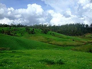 Ambewela Place in Central Province, Sri Lanka