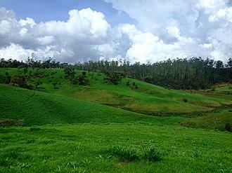 Ambewela - Hills and grasslands at Ambewela.
