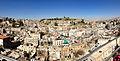 Amman from Wild Jordan.jpg