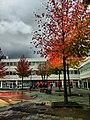 Amsterdam, outubro de 2011 - panoramio (4).jpg