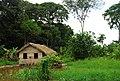 Amzon dwelling - panoramio.jpg