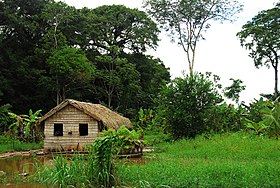 Amzon dwelling - panoramio.jpg