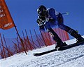 Andrew Ernemann Ski Racing.jpg