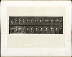 Animal locomotion. Plate 474 (Boston Public Library).jpg