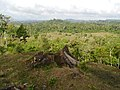 Area comunidad Martha Lorena. - panoramio.jpg