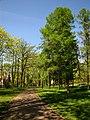 Arkadijas parks - panoramio (12).jpg