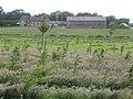 Ashenfield Farm - geograph.org.uk - 478905.jpg