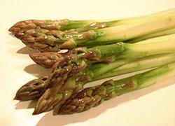 Asparagus officinalis, фотографија је преузета са википедијине оставе