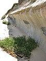 At the foot of the sea wall - geograph.org.uk - 946887.jpg