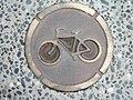 Auckland CycleLane.jpg