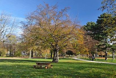 So kommt man zu der Auer-Welsbach-Park mit den Öffentlichen - Mehr zum Ort Hier