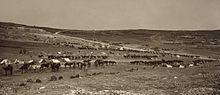 Eine Weitwinkelansicht eines Lagers auf einem Hugel, im Vordergrund stehen Pferde und helle Zelte
