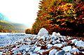 Autumn rocks.jpg