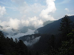Ayubia National Park Track 2.JPG