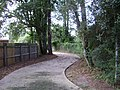 Azalea City Trail 65.jpg